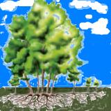 تشکیل درخت های جدید از جوانه های روی ریشه